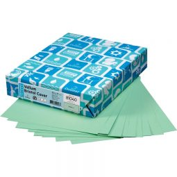 Domtar EarthChoice® Colors Vellum Bristol Cover Stock