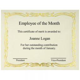 "St. James Paper Company Elite Certificates Deco 8-1/2 X 11"""